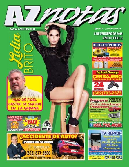 *AZGloss 02_08.indd