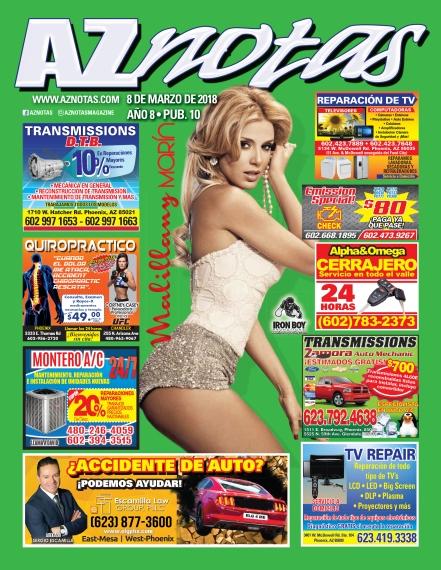 *AZGloss 03_08.indd